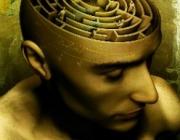 The Laboratory for Visual Neuroplasticity