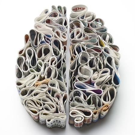 Human brain research paper