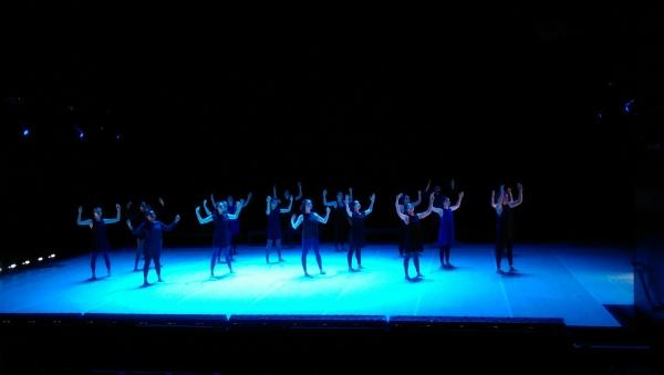 "Harvard Dance Project ""What Moves You"""
