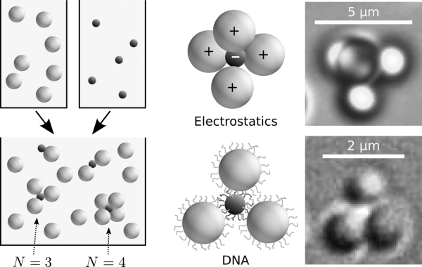 Clusters self-assemble in bidisperse mixtures of polystyrene microspheres