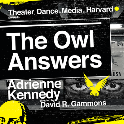 owl answers