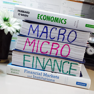 Economics Finance Textbooks and Notes