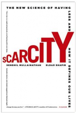 Link to Scarcity at Amazon