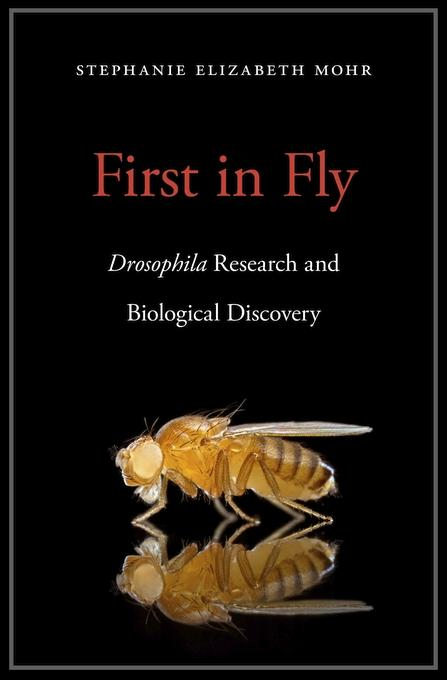 Cover image for the book First in Fly by Stephanie E. Mohr