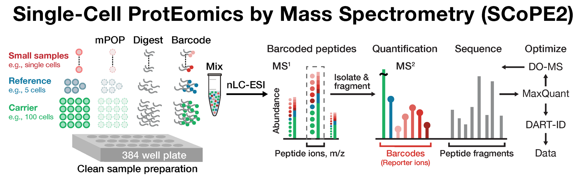 Single-Cell ProtEomics by Mass-Spectrometry (SCoPE-MS)