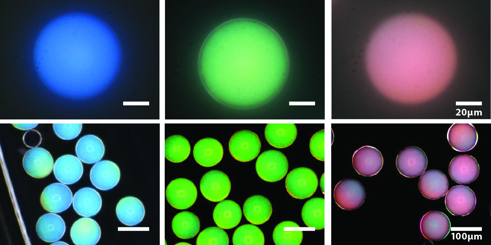 Picture of blue, green, and red photonic capsules