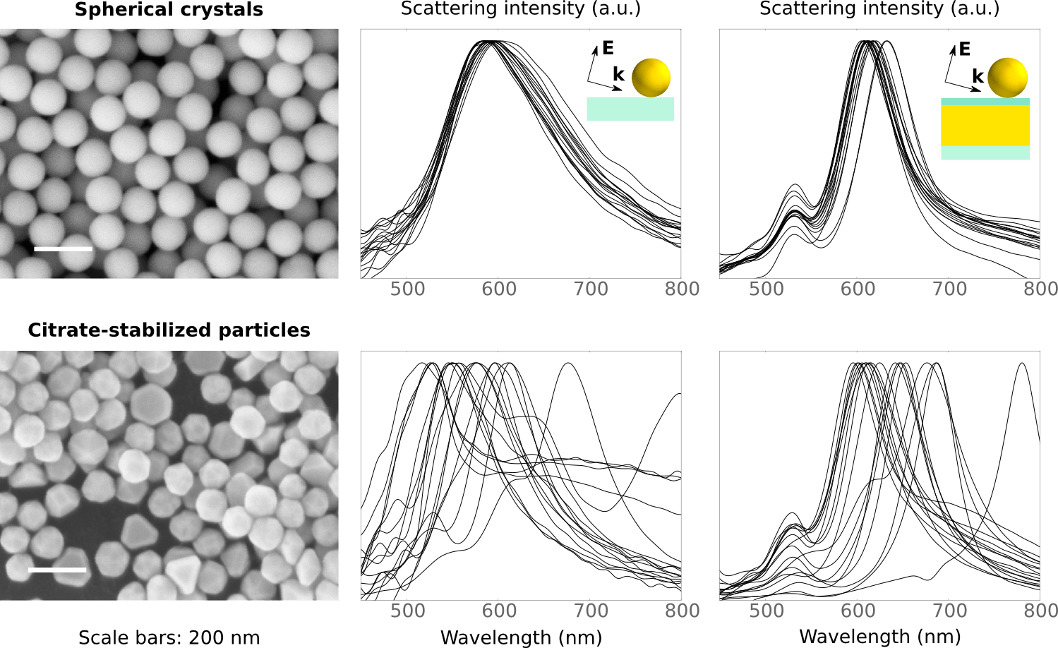 Reproducibility of single particle scattering spectra for spherical crystals compared with conventional gold nanoparticles