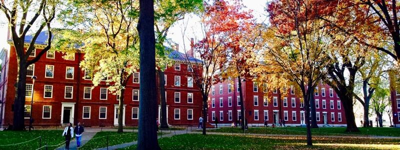 Harvard Yard is Ablaze in Autumn Colors (Photo by Niki Lanter)