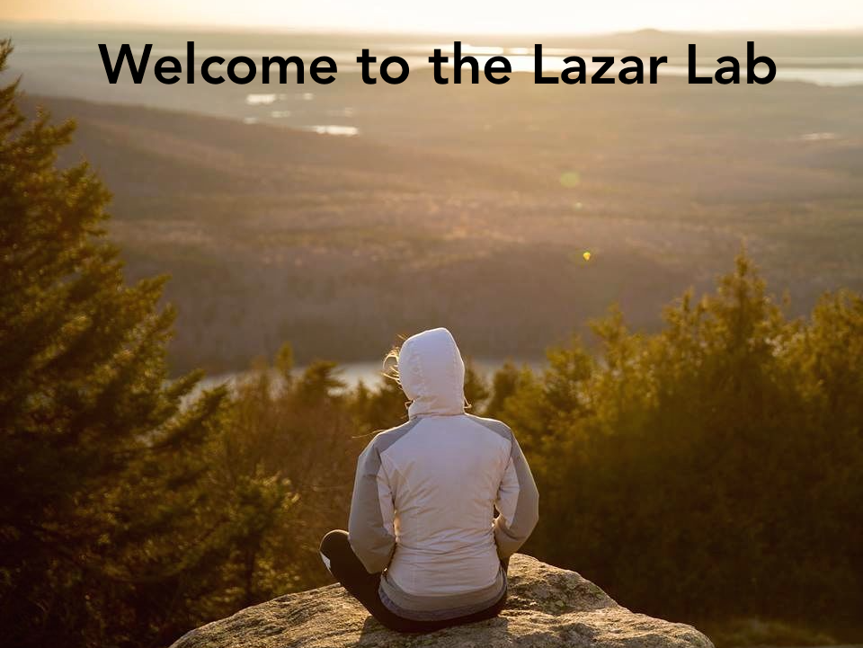Welcome to the Lazar Lab