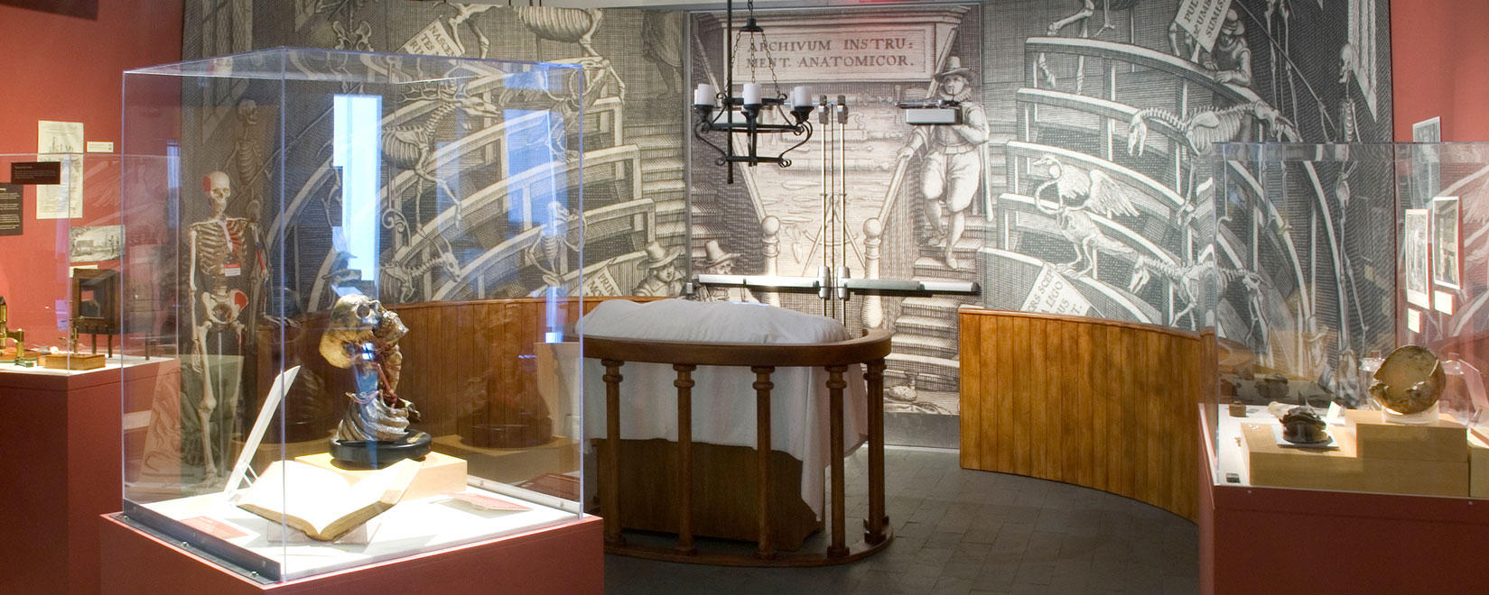 Anatomy Theatre in Gallery