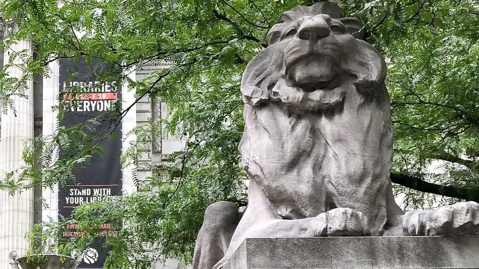NYPL Lion Fortitude - Libraries Are For Everyone