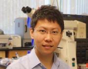 Xin (Shin) Xie, Ph.D.